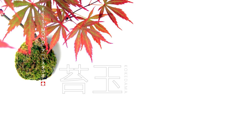 苔玉 kokedama moss ball acer palmatum bonsai kitsimono art