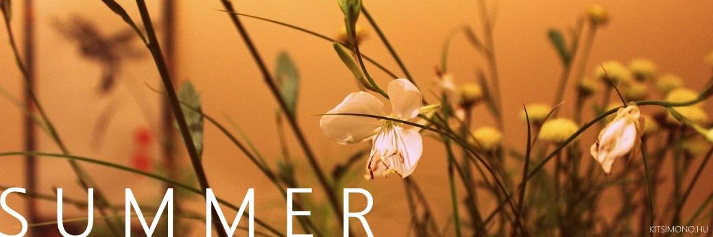 a kusamono four season kitsimono (50)