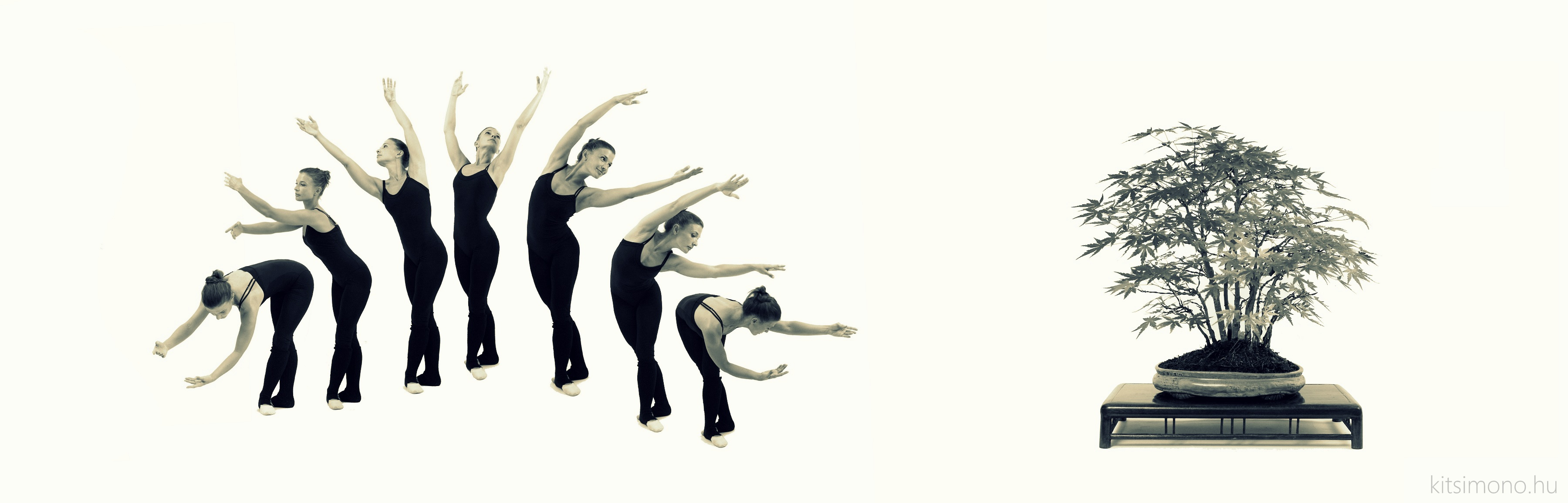 acer palmatum momiji japan juhar bonsai tell with ballet dance balet figures kitsimono (3) másolata