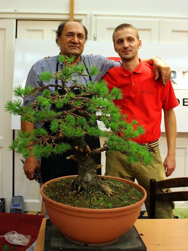 adriano bonini bonsai and suiseki mustra hungary (3)