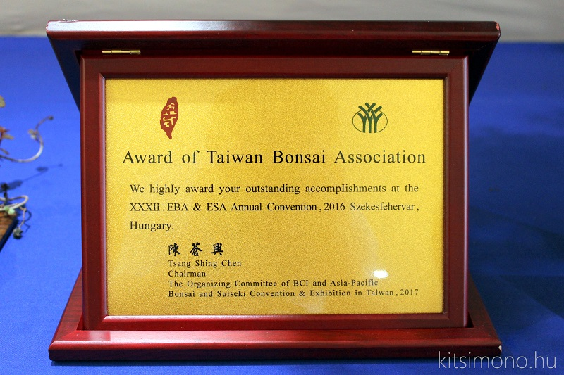 crataegus bonsai kitsimono (1)