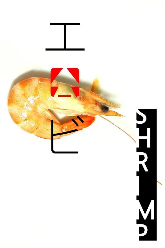 garnela tintahal lazac grill sutes recept kitsimono (4)