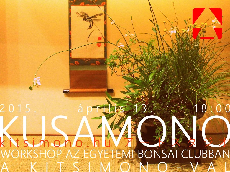 kusamono, workshop, kitsimono, egyetemi bonsai club, too rustic bonsai frog