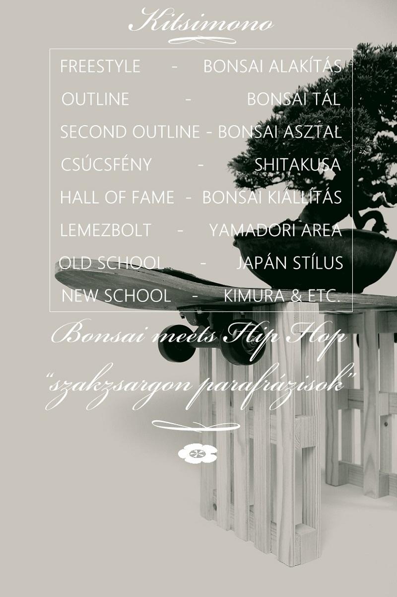 kitsimono modern bonsai and art urban bonsai 盆栽 草物 下草 (10)