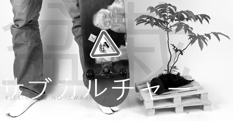kitsimono modern bonsai and art urban bonsai 盆栽 草物 下草 (12)