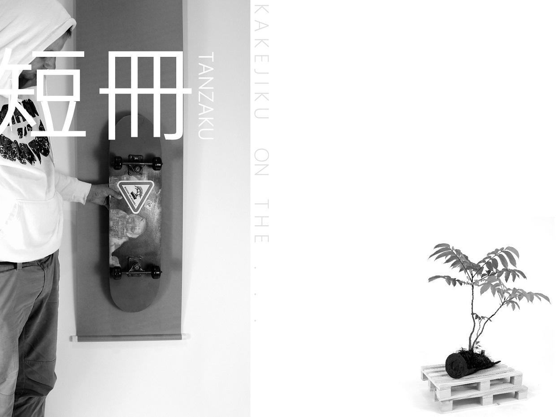 kitsimono modern bonsai and art urban bonsai 盆栽 草物 下草 (16)