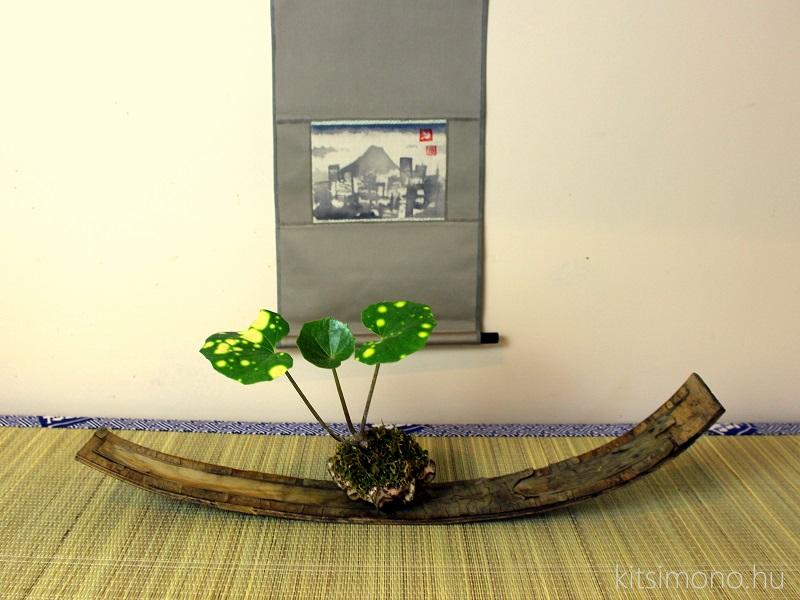 kusamono shitakusa plant on display in kusamono pot ceramics keramik kitsimono with hangingscroll kakejiku (3)