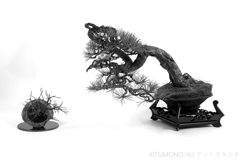 modern bonsai kazari with black pine and tsojubai shohin in the kitsimono art studio (9)