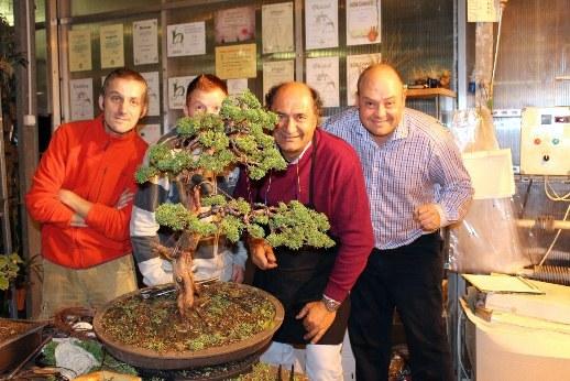 papp sandor adriano bonini marczika andras bonsai studio workshop erd