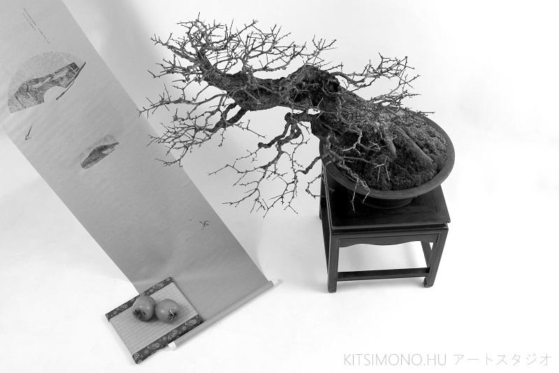 postmodern kazari with crataegus bonsai and kaki fruit on kakejiku (9)
