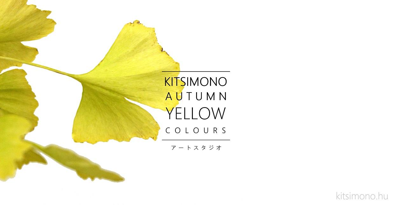 zizifus jujuba bonsai ginkgo biloba bonsaj autumn display kitsimono (1)