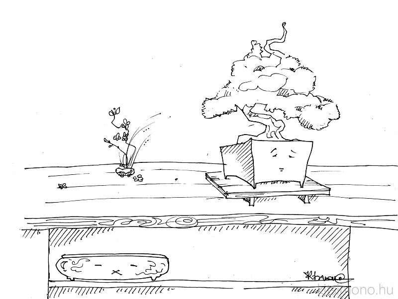 art kitsimono bonsai pot graphic draw bonsai dish (5)