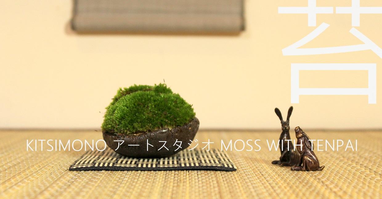 kitsimono moss kusamono and tenpai in tokonoma display (9)