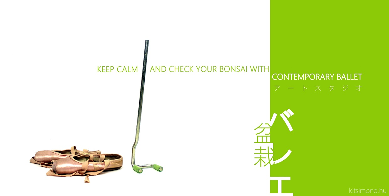 contemporary ballet photos with bonsai and style kitsimono (1)