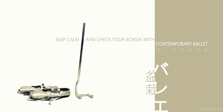contemporary ballet photos with bonsai and style kitsimono (2)